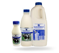 Milk & Yoghurt